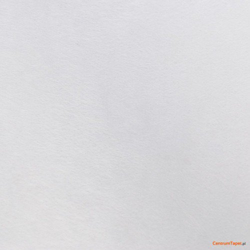 Tapeta z włókna szklanego Vlies