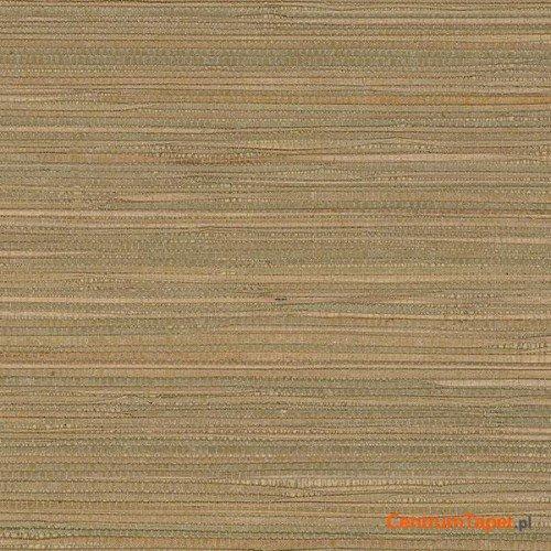 Tapeta 488-408 Grasscloth 2 Galerie