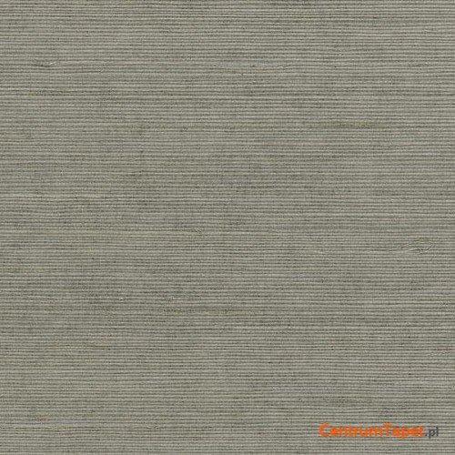 Tapeta 488-410 Grasscloth 2 Galerie