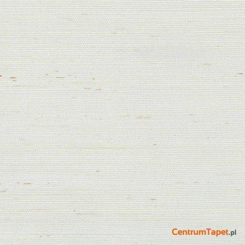 Tapeta 488-411 Grasscloth 2 Galerie
