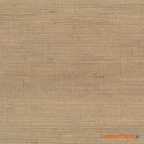 Tapeta 488-419 Grasscloth 2 Galerie