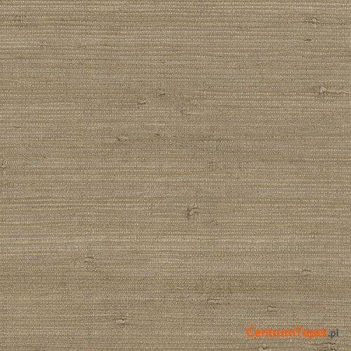 Tapeta 488-431 Grasscloth 2 Galerie