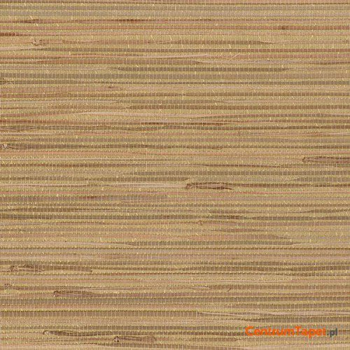 Tapeta 488-441 Grasscloth 2 Galerie