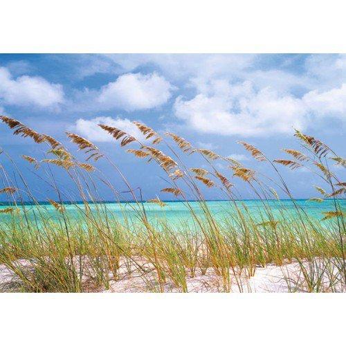 Fototapeta Ocean Breeze  8-515