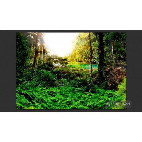 Fototapeta W tropikach...