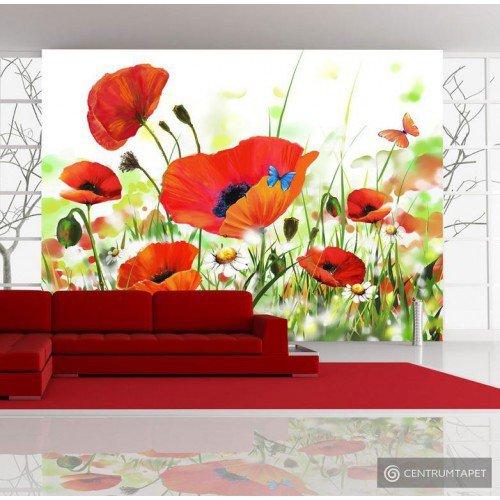 Fototapeta Country poppies 10080906-12