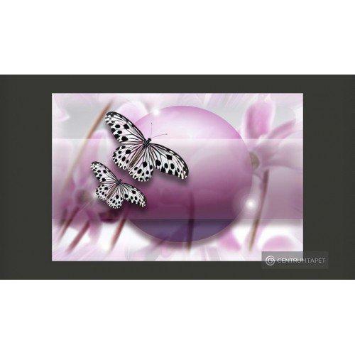 Butterfly! 10080903-5
