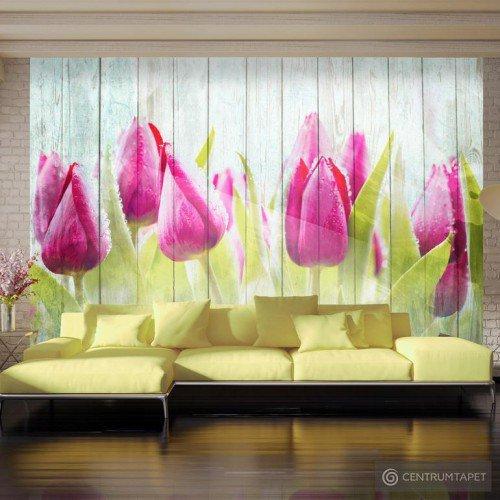 Fototapeta Tulipany na białym drewnie 10110906-128