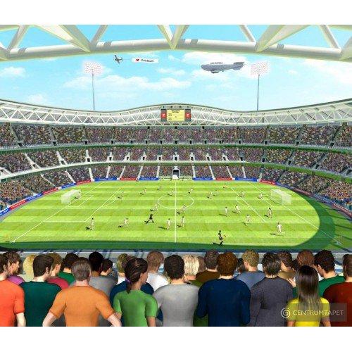 Fototapeta dla dzieci Football Crazy 41769