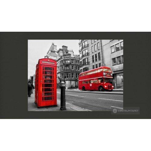 Fototapeta 100404-6 Londyn:...