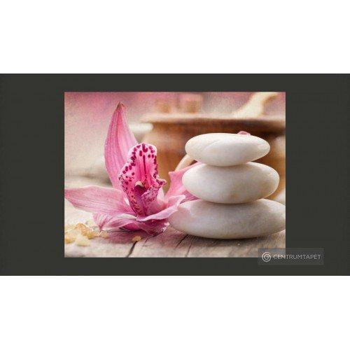 Fototapeta 100403-262 Zen i...