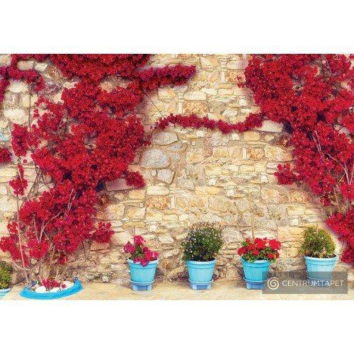 Fototapeta 3579 Mur z kwiatami