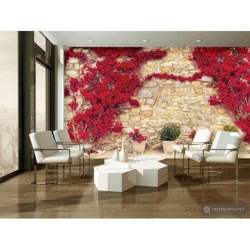Fototapeta 3581 Mur z kwiatami