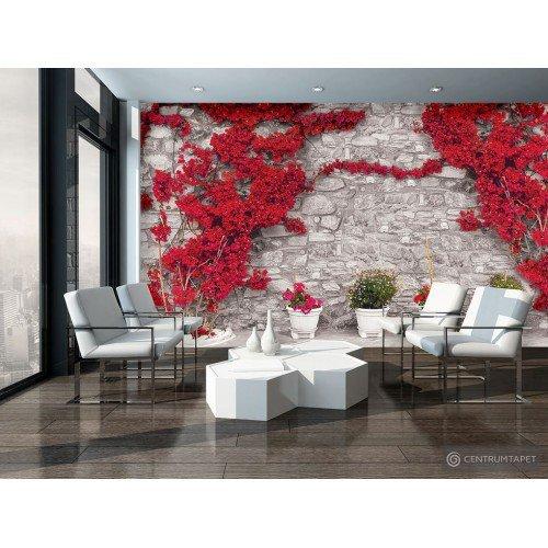 Fototapeta 3582 Mur z kwiatami