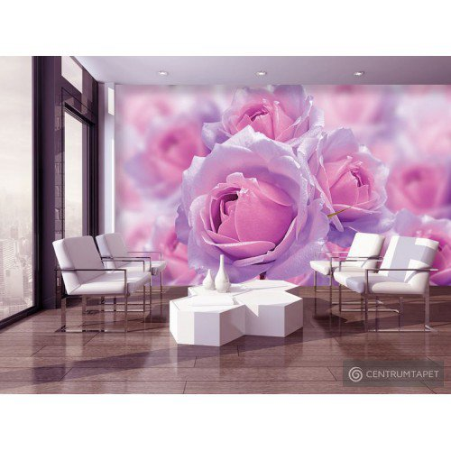 Fototapeta 3662 Bukiet róż