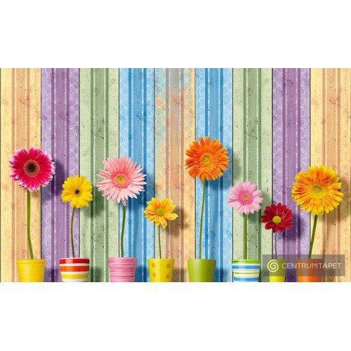 Fototapeta 3708 Kwiaty
