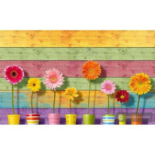 Fototapeta 3710 Kwiaty