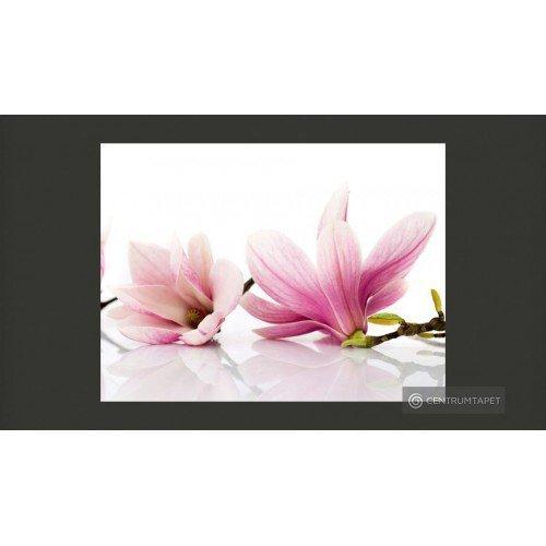 Fototapeta 100406-51 Kwiat...