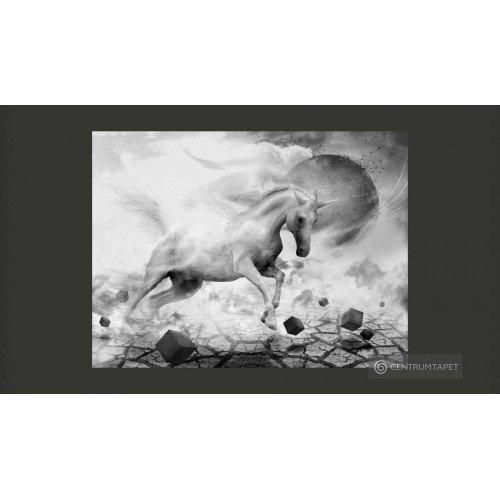 Fototapeta 10040901-13 Unicorn