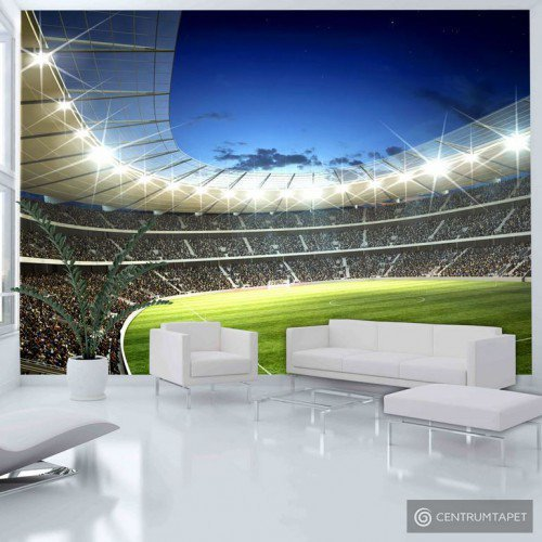 Fototapeta 100402-34 Stadion narodowy