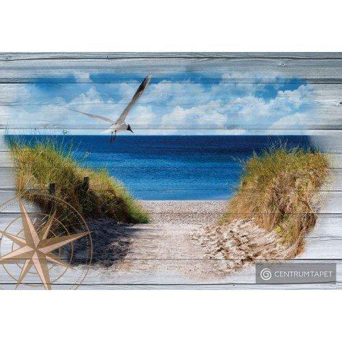 Fototapeta 10026 Dzień na plaży