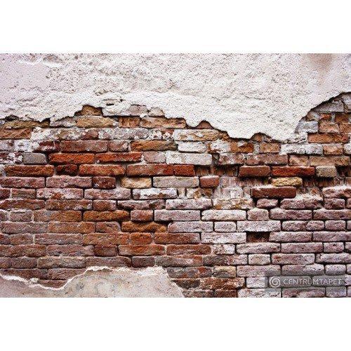 Fototapeta 10182 Ściana z cegły