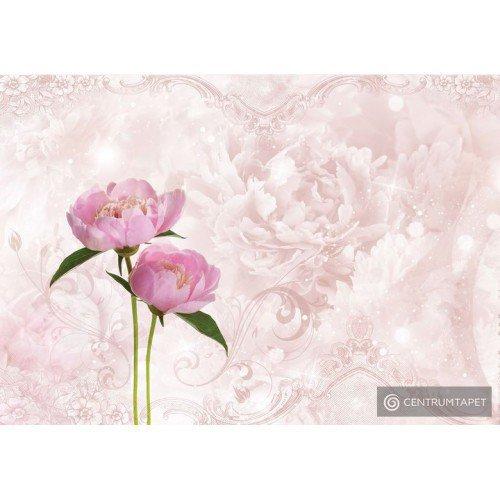 Fototapeta 10295 Różowa piwonia