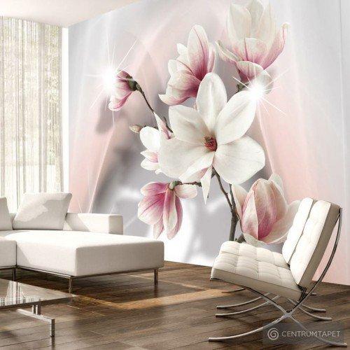 Fototapeta Białe magnolie b-A-0201-a-b