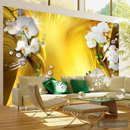 Fototapeta Orchidea w złocie b-A-0223-a-b