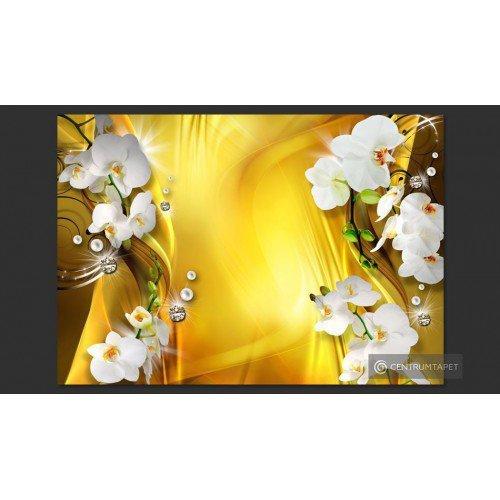 Fototapeta Orchidea w...