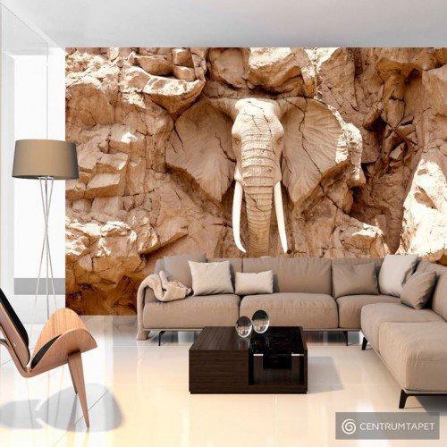 Fototapeta Kamienny słoń (RPA) g-B-0007-a-b