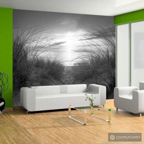 Fototapeta plaża (czarno-biały) 101103-1