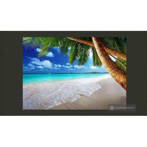Fototapeta Tropikalna wyspa...