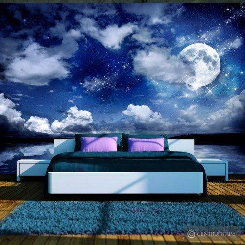 Fototapeta Magiczna noc 10110903-27