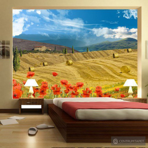 Fototapeta Jesienny krajobraz 10110903-8