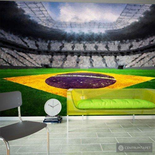 Fototapeta Brazylijski stadion 10110904-11