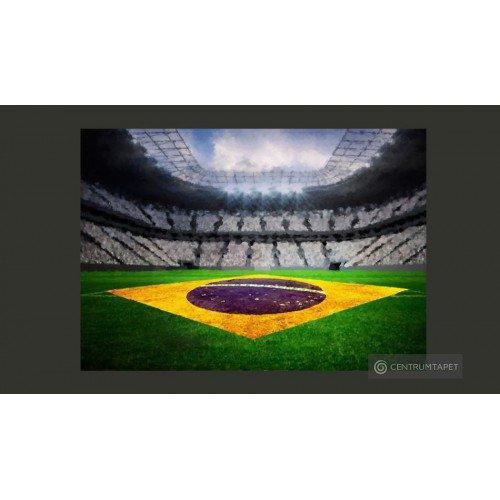 Fototapeta Brazylijski...