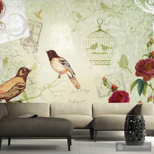 Fototapeta Vintage birds 10110905-14