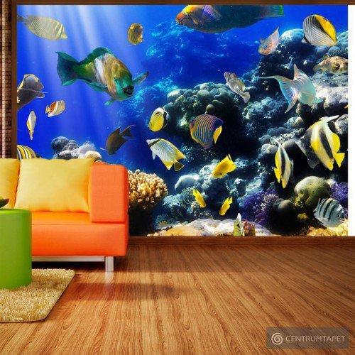 Fototapeta Podwodna przygoda 10110905-34