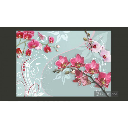 Fototapeta Różowe orchidee...
