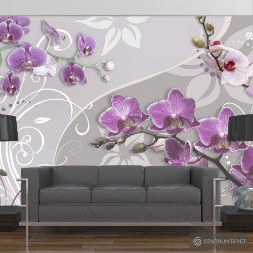 Fototapeta Lot purpurowych orchidei 10110906-32