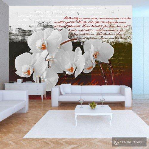 Fototapeta Pamiętnik i orchidea 10110906-7