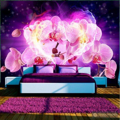Fototapeta Orchidee w płomieniach 10110906-76