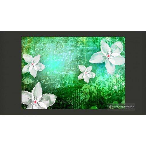 Fototapeta Floral notes III...