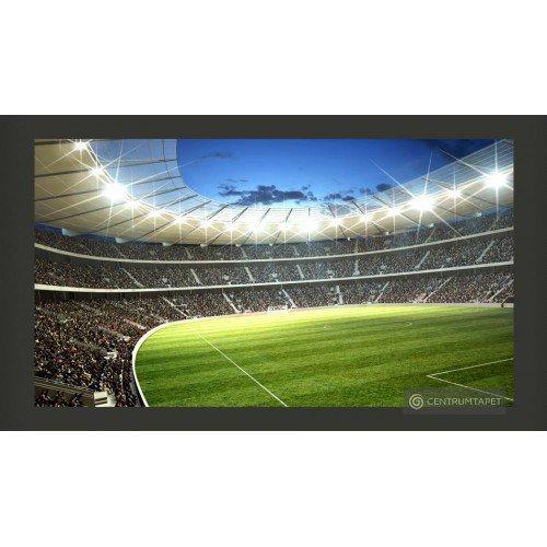 Fototapeta Stadion 101302-1
