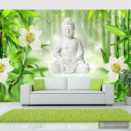 Fototapeta Budda i natura b-A-0049-a-a