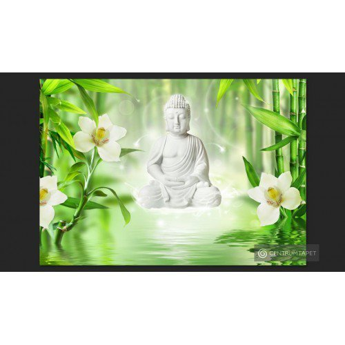 Fototapeta Budda i natura...