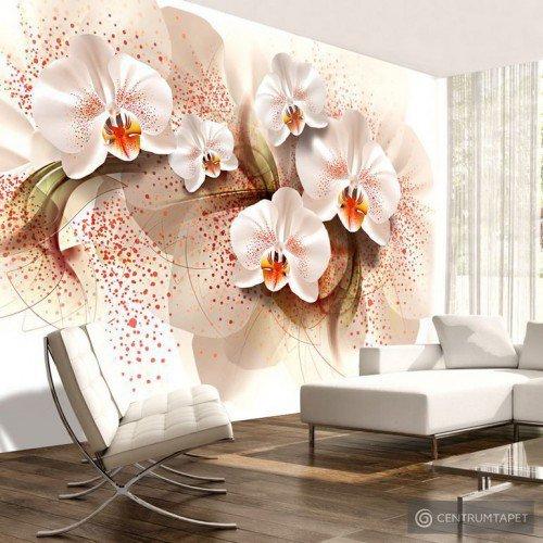 Fototapeta Herbaciane orchidee b-A-0168-a-a