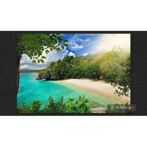 Fototapeta Słoneczna plaża...