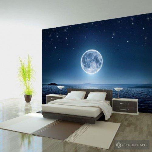 Fototapeta Księżycowa noc c-A-0036-a-a